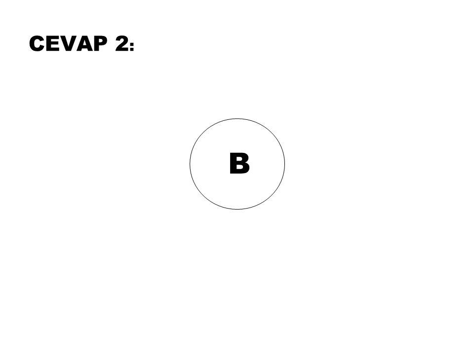 CEVAP 2: B