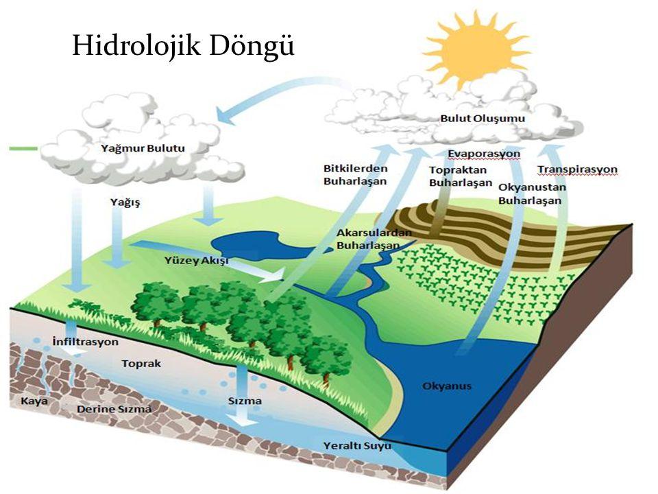Hidrolojik Döngü