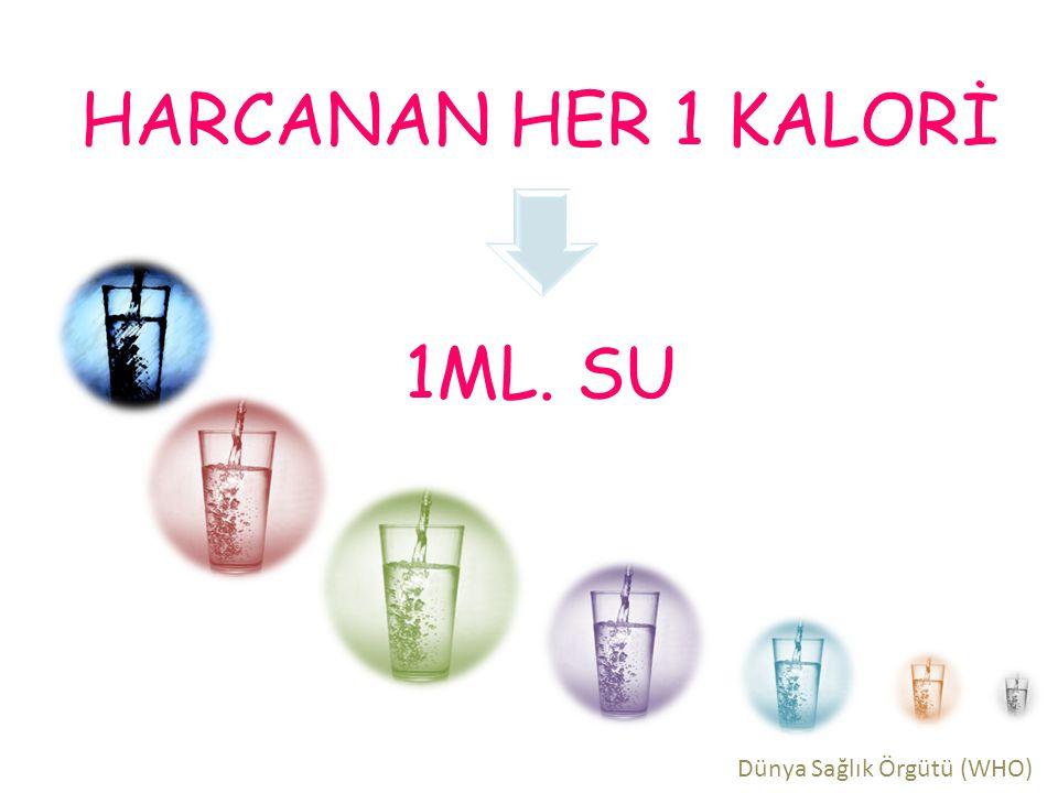 HARCANAN HER 1 KALORİ 1ML. SU