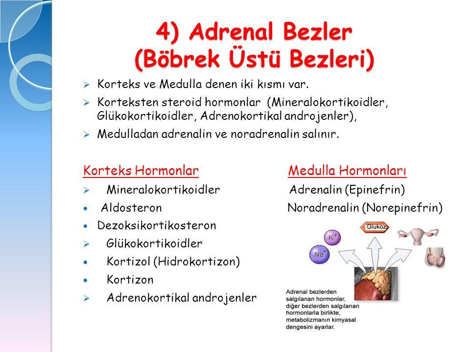 4) Adrenal Bezler (Böbrek Üstü Bezleri)