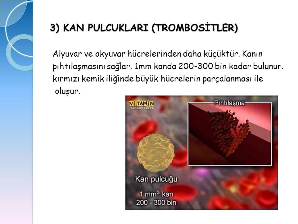 3) KAN PULCUKLARI (TROMBOSİTLER)
