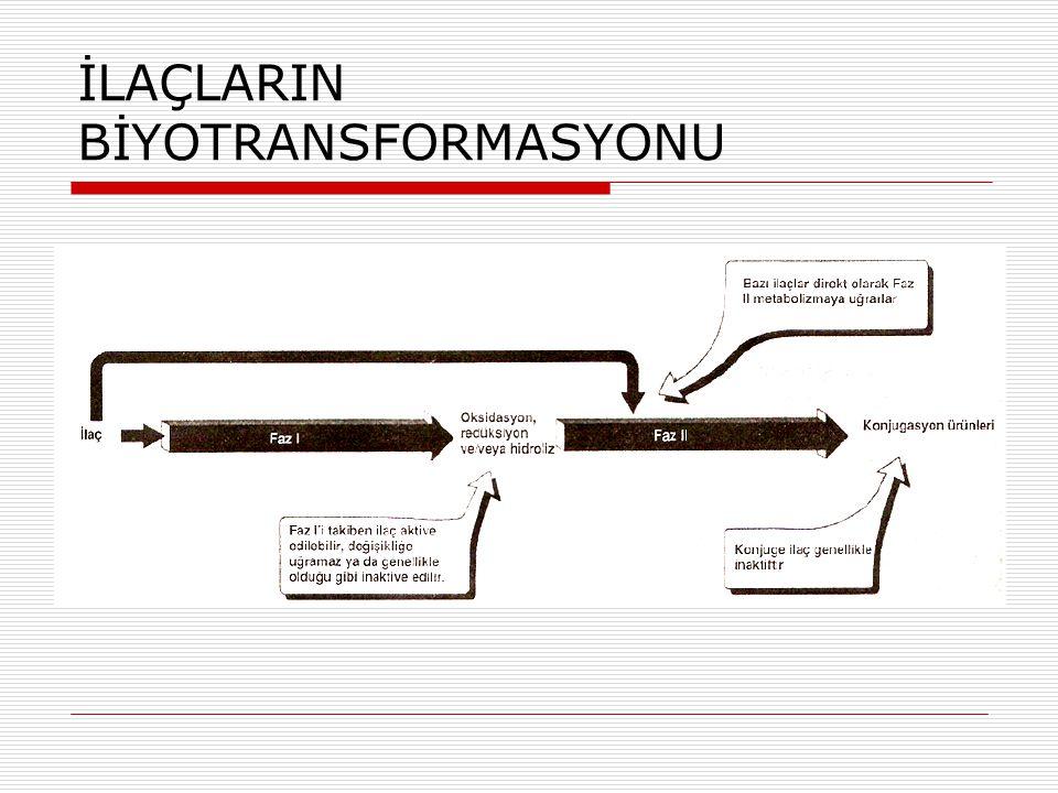 İLAÇLARIN BİYOTRANSFORMASYONU