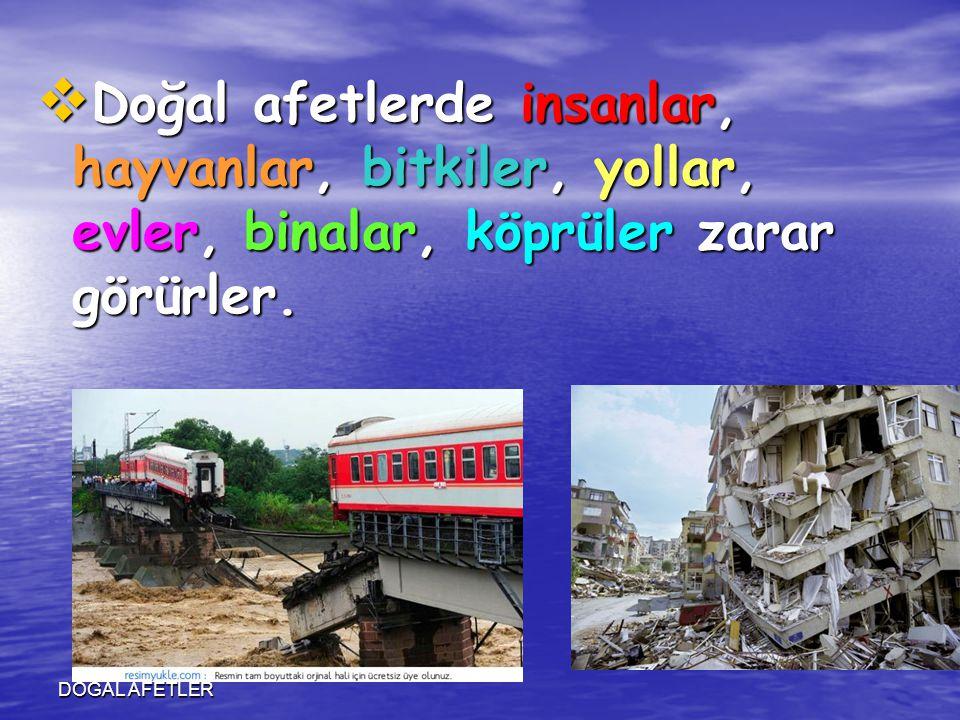 Doğal afetlerde insanlar, hayvanlar, bitkiler, yollar, evler, binalar, köprüler zarar görürler.