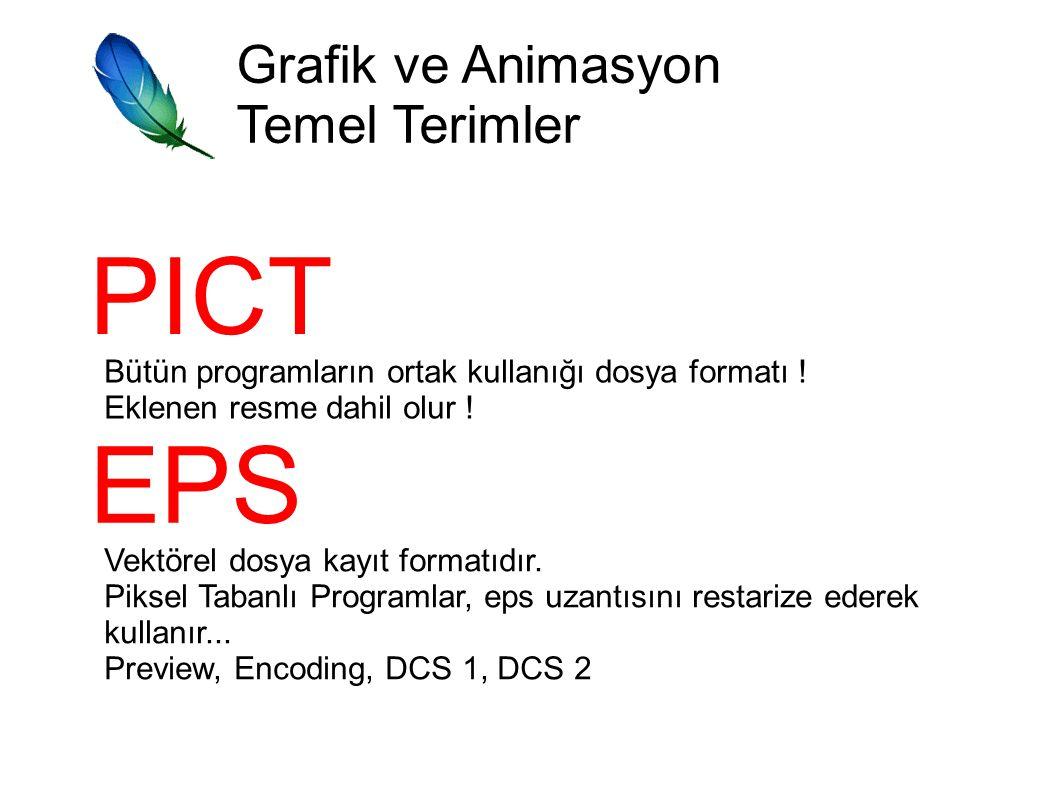 PICT EPS Grafik ve Animasyon Temel Terimler