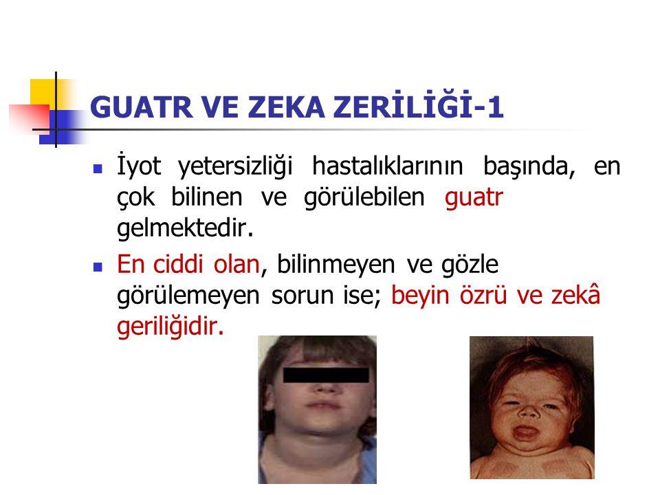 GUATR VE ZEKA ZERİLİĞİ-1