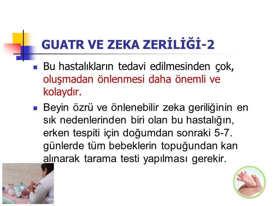 GUATR VE ZEKA ZERİLİĞİ-2