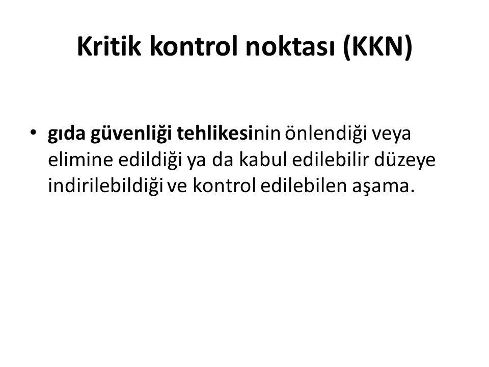 Kritik kontrol noktası (KKN)