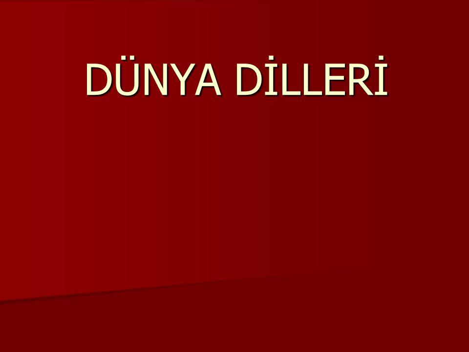 DÜNYA DİLLERİ