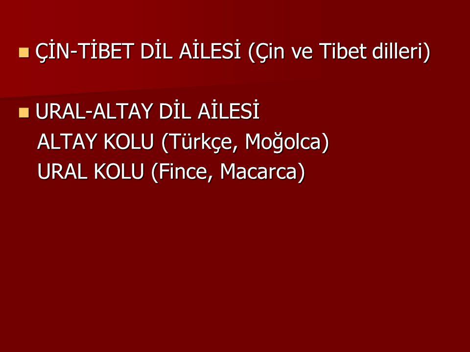 ÇİN-TİBET DİL AİLESİ (Çin ve Tibet dilleri)