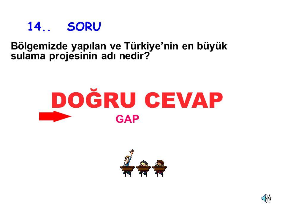 14.. SORU Bölgemizde yapılan ve Türkiye'nin en büyük sulama projesinin adı nedir DOĞRU CEVAP GAP