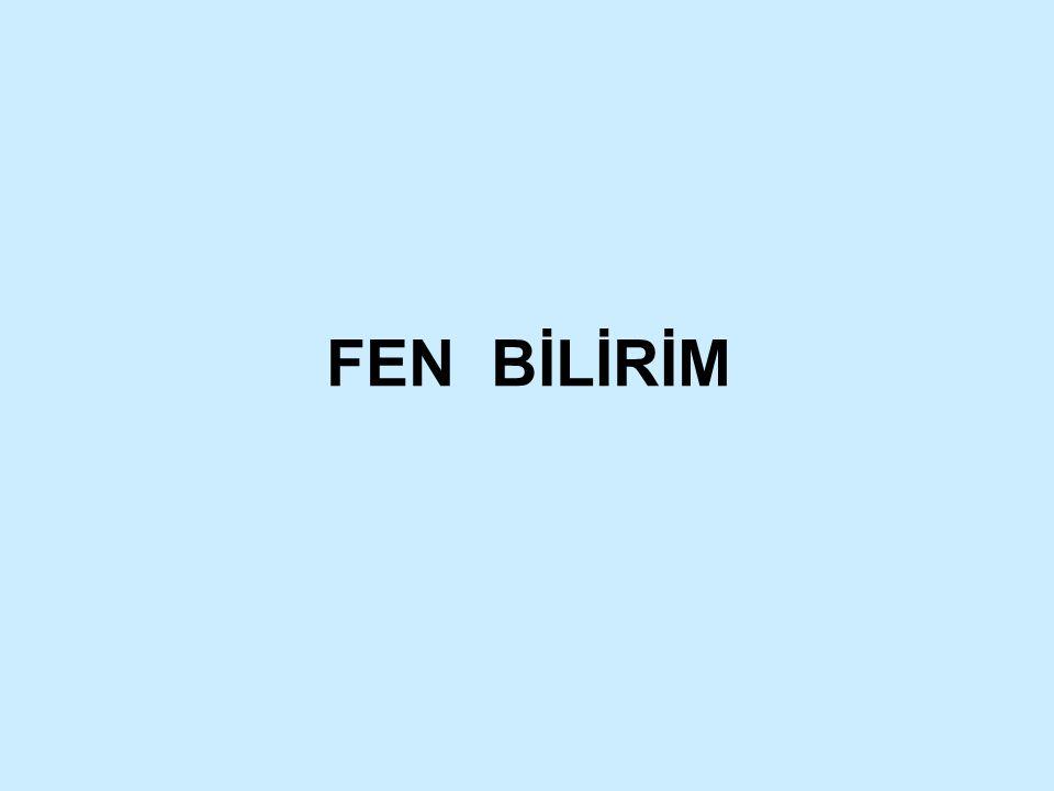 FEN BİLİRİM