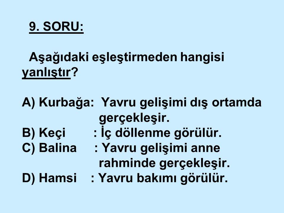 9. SORU: Aşağıdaki eşleştirmeden hangisi yanlıştır