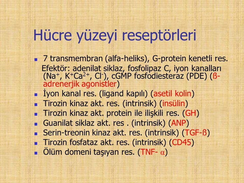 Hücre yüzeyi reseptörleri