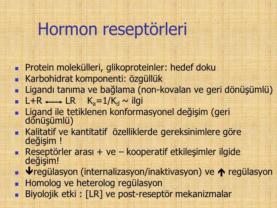 Hormon reseptörleri Protein molekülleri, glikoproteinler: hedef doku