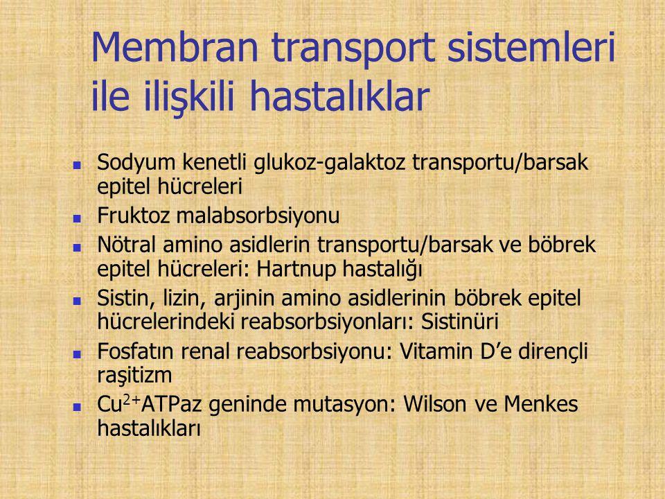 Membran transport sistemleri ile ilişkili hastalıklar