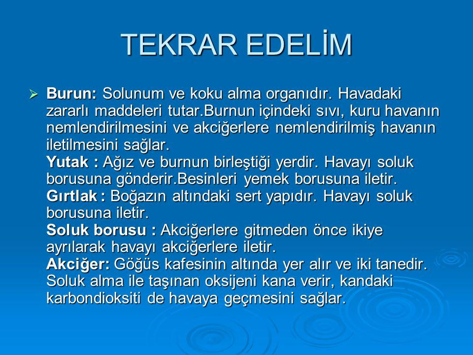 TEKRAR EDELİM