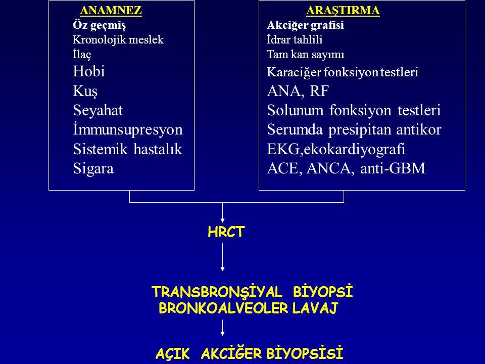 Hobi Karaciğer fonksiyon testleri Kuş ANA, RF