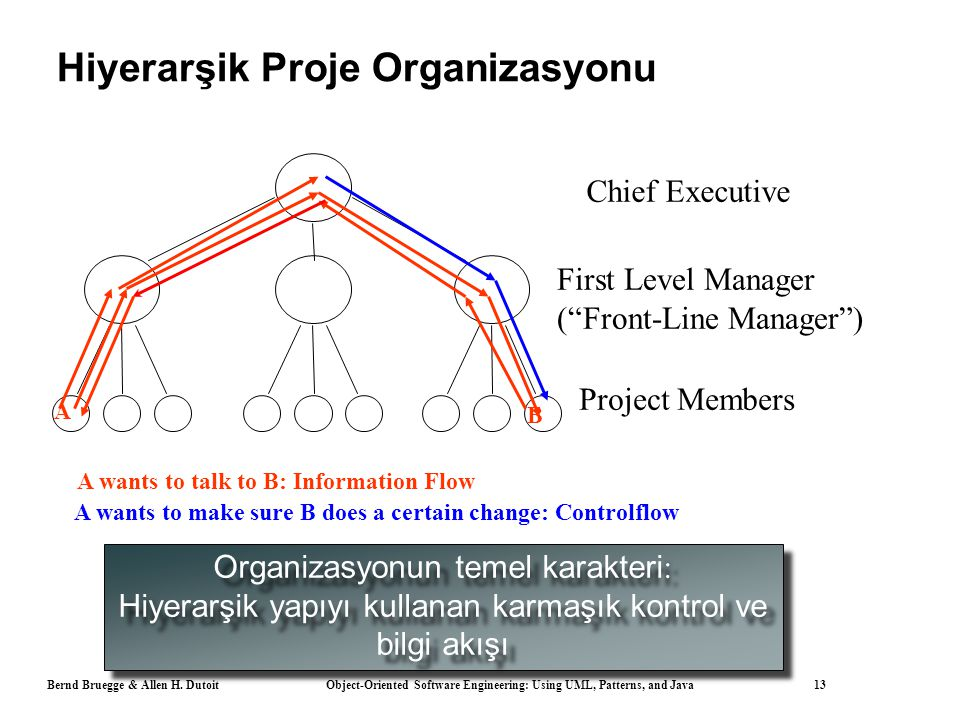 Hiyerarşik Proje Organizasyonu