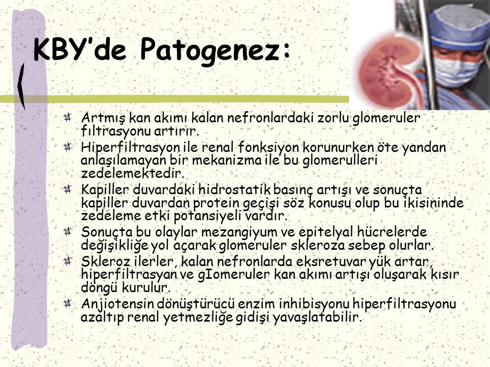 KBY'de Patogenez: Artmış kan akımı kalan nefronlardaki zorlu glomeruler fıltrasyonu artırır.
