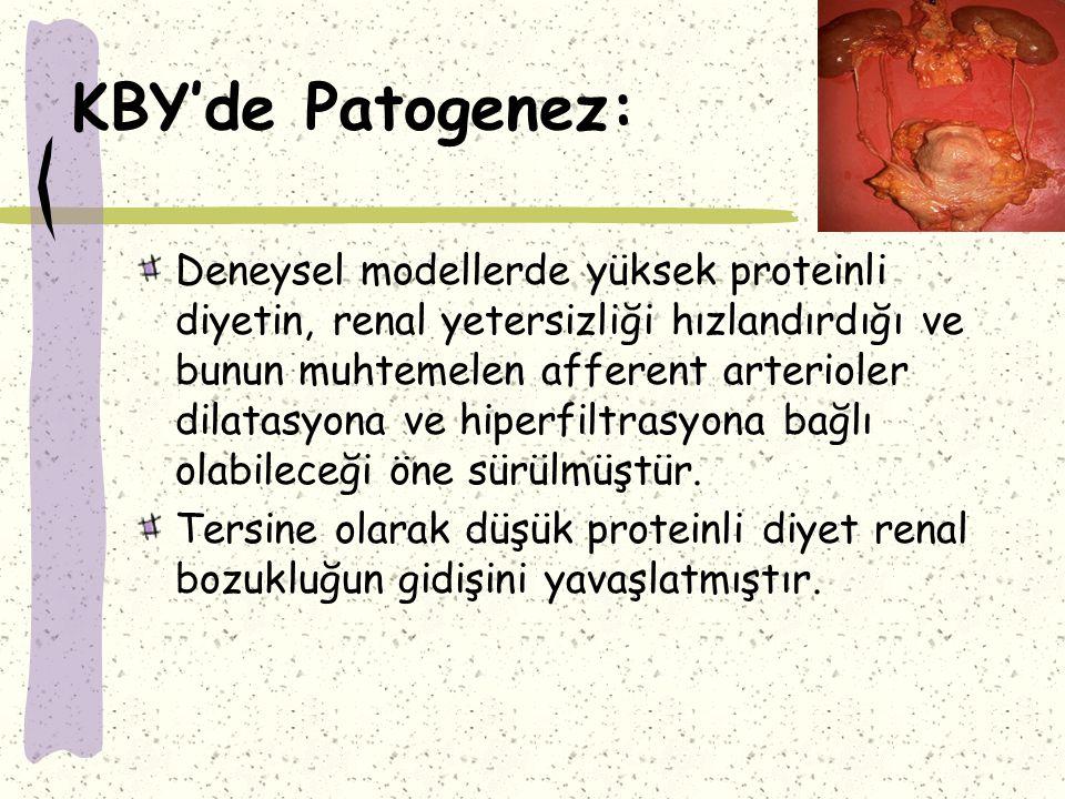 KBY'de Patogenez: