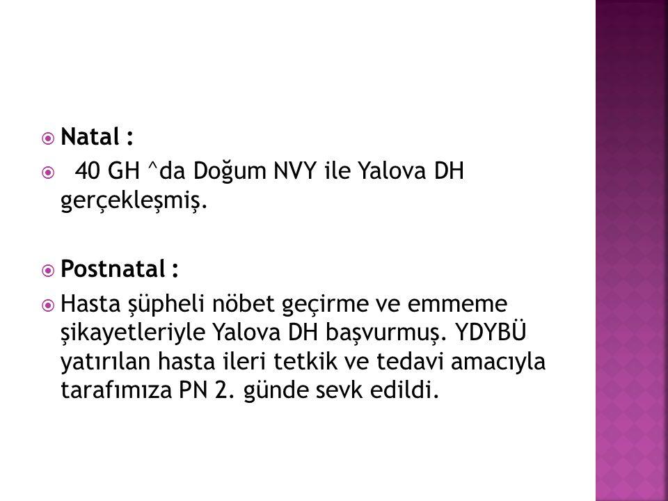 Natal : 40 GH ^da Doğum NVY ile Yalova DH gerçekleşmiş. Postnatal :