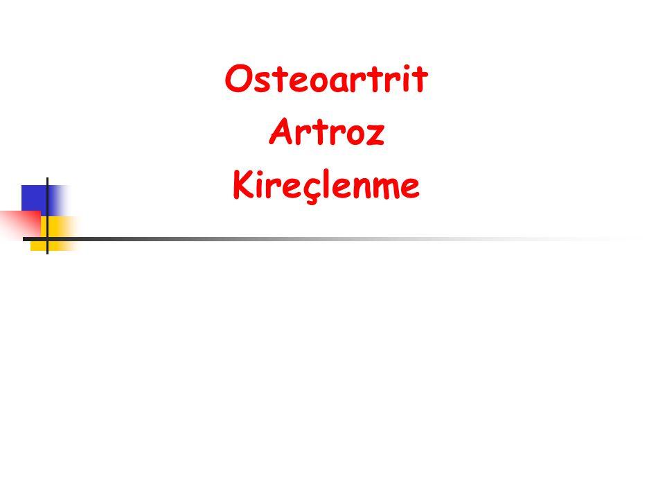Osteoartrit Artroz Kireçlenme