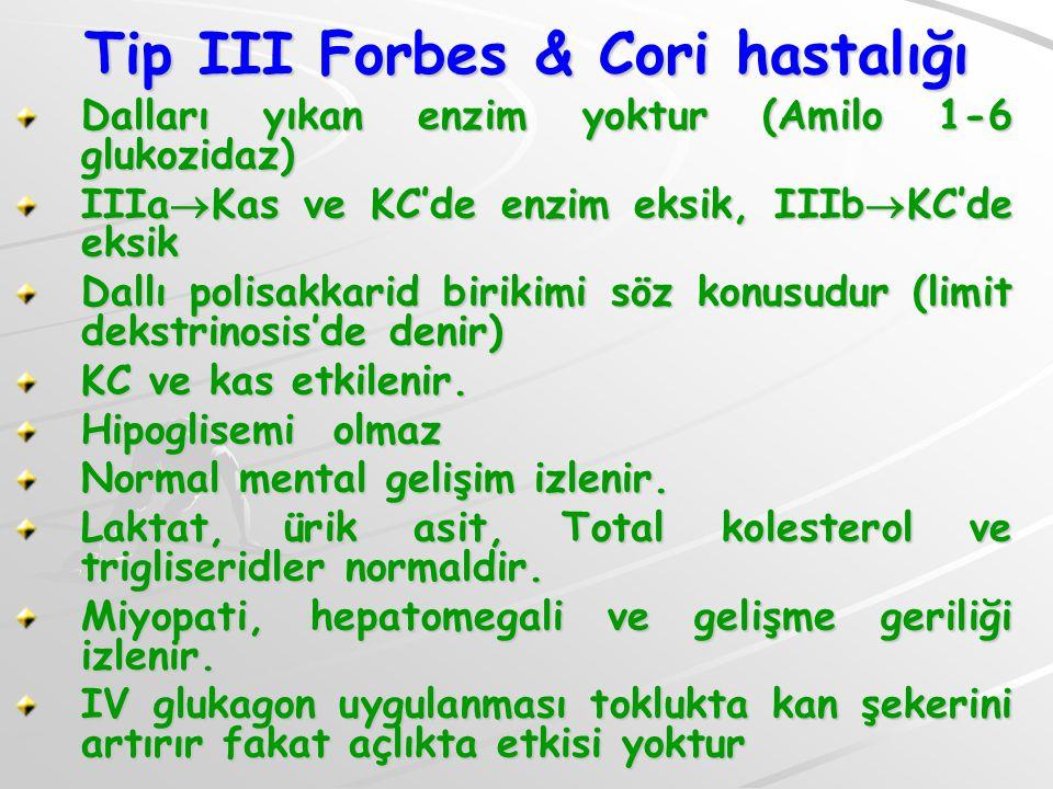 Tip III Forbes & Cori hastalığı