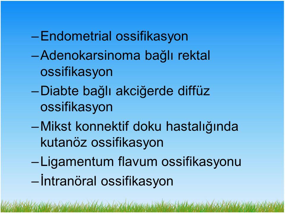 Endometrial ossifikasyon