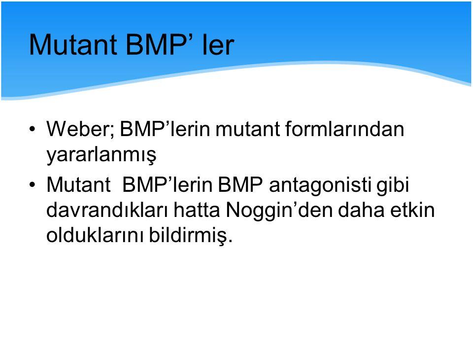 Mutant BMP' ler Weber; BMP'lerin mutant formlarından yararlanmış