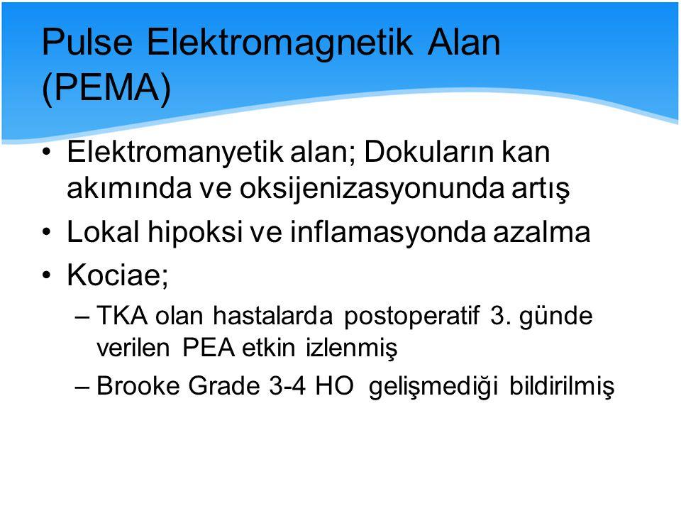 Pulse Elektromagnetik Alan (PEMA)