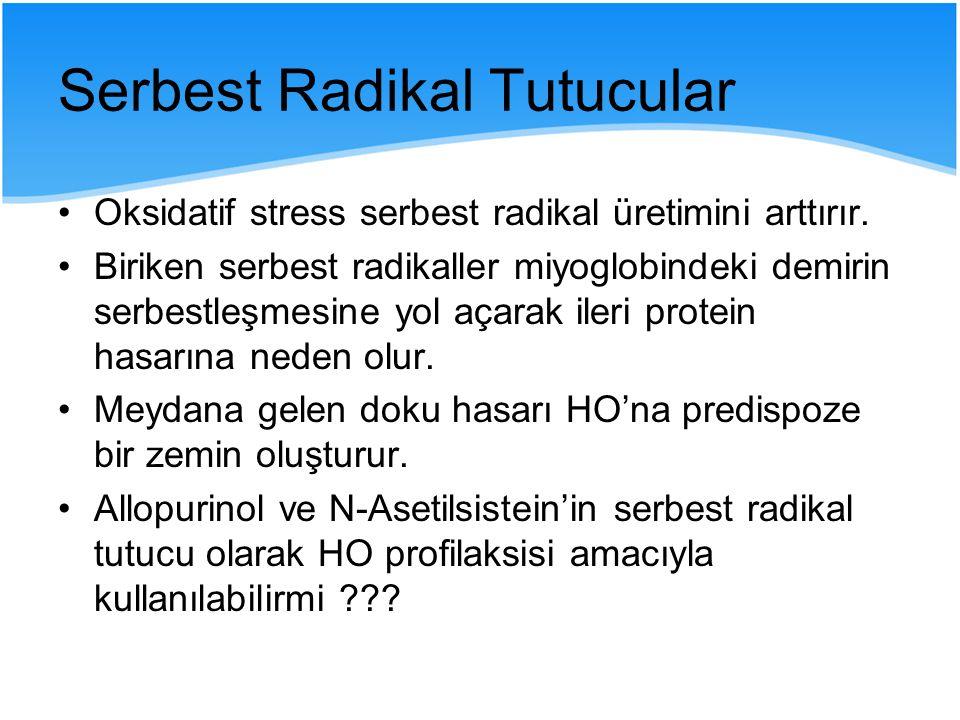 Serbest Radikal Tutucular