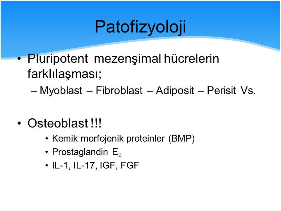 Patofizyoloji Pluripotent mezenşimal hücrelerin farklılaşması;