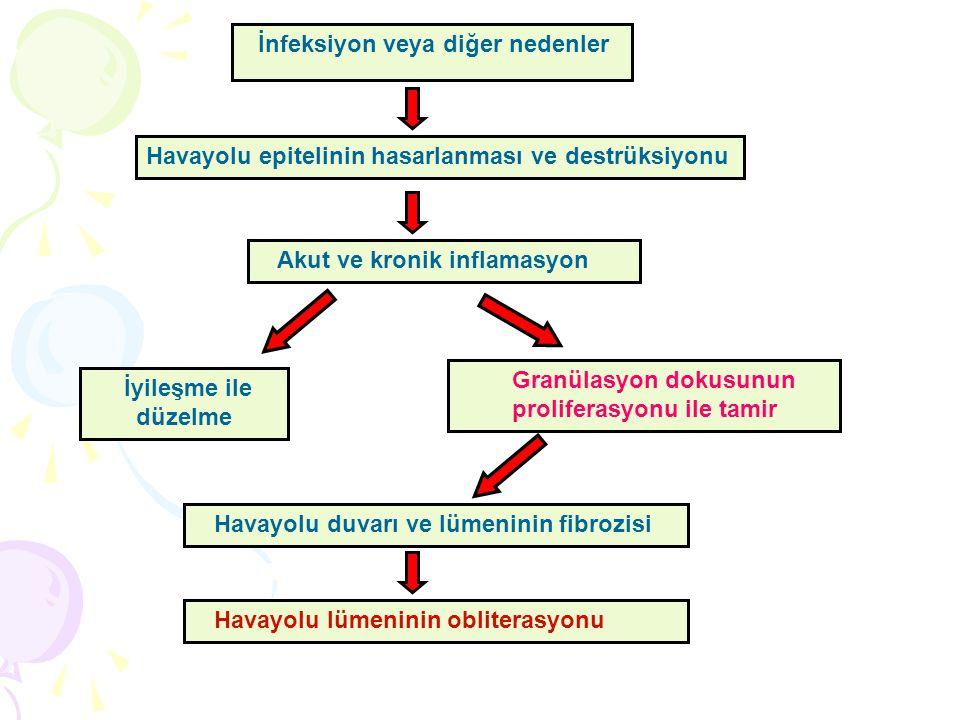 Granülasyon dokusunun proliferasyonu ile tamir