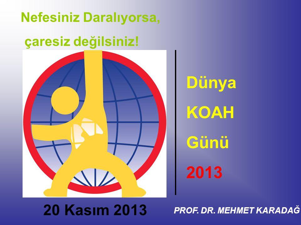 Dünya KOAH Günü 2013 20 Kasım 2013 Nefesiniz Daralıyorsa,