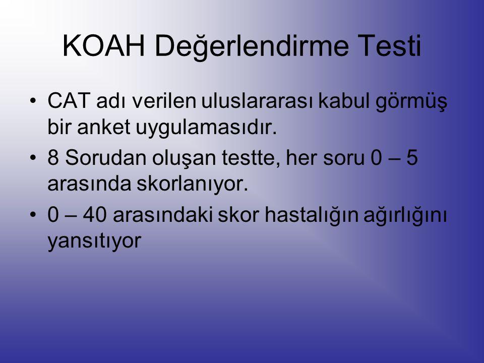 KOAH Değerlendirme Testi
