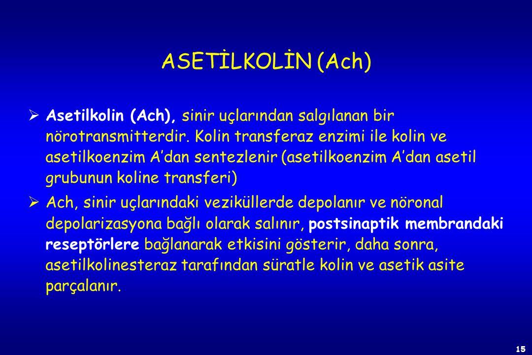 ASETİLKOLİN (Ach)