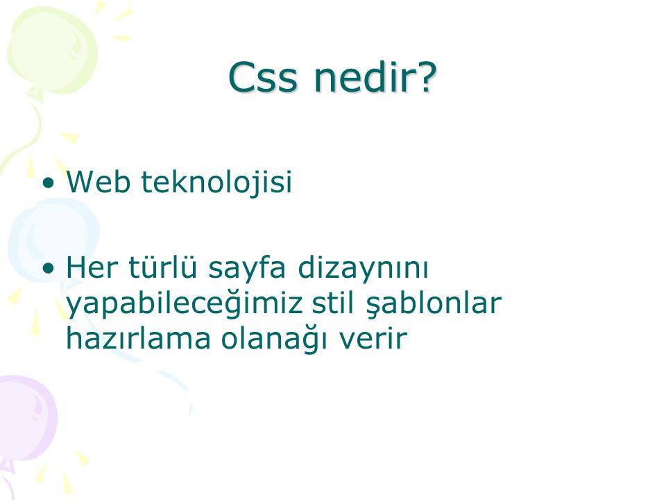 Css nedir Web teknolojisi