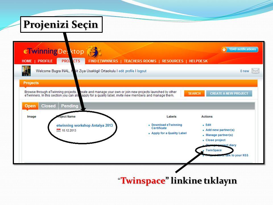 Projenizi Seçin Twinspace linkine tıklayın