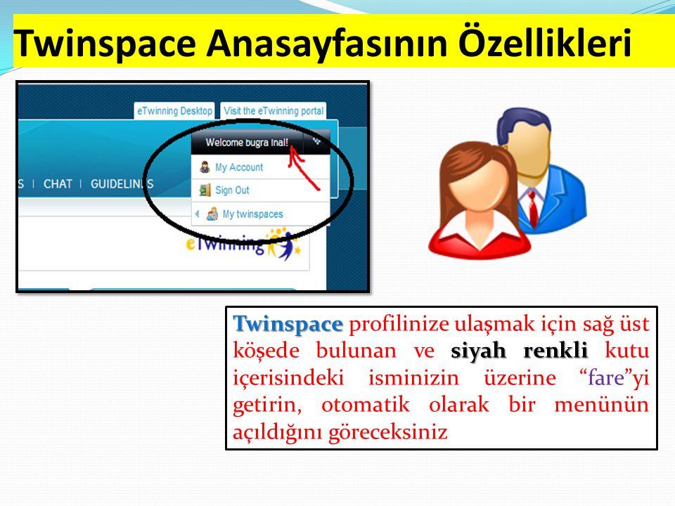 Twinspace Anasayfasının Özellikleri