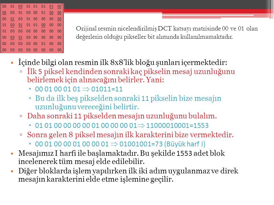 İçinde bilgi olan resmin ilk 8x8'lik bloğu şunları içermektedir: