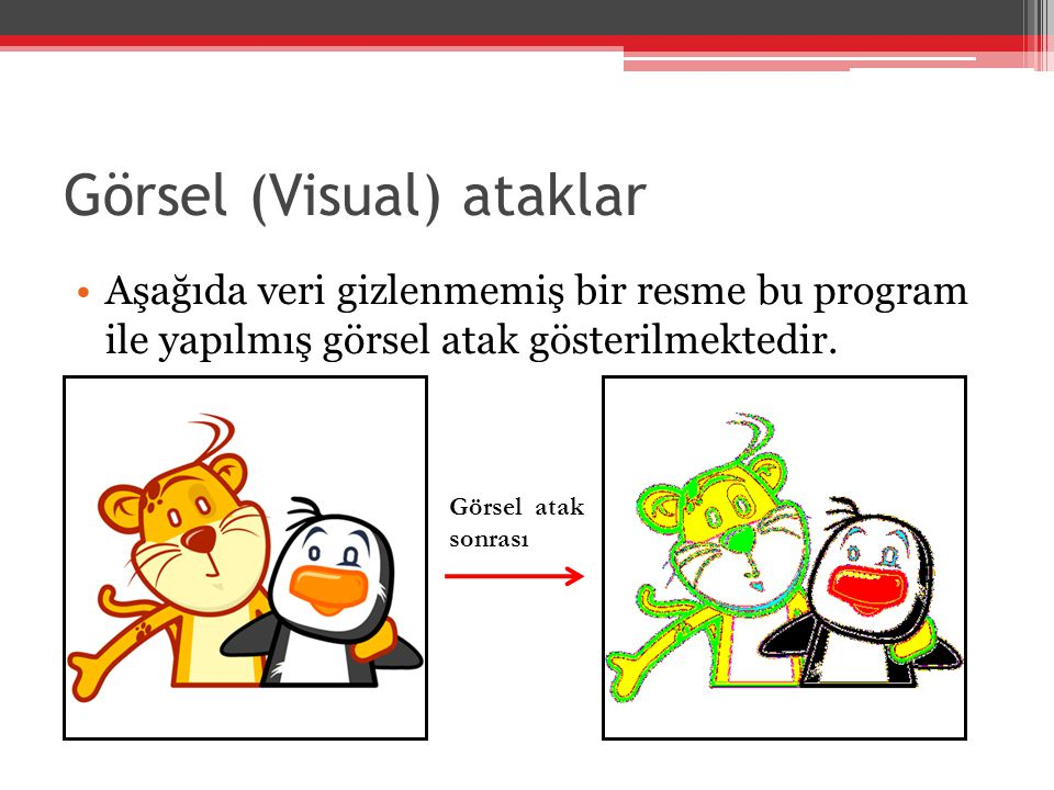 Görsel (Visual) ataklar