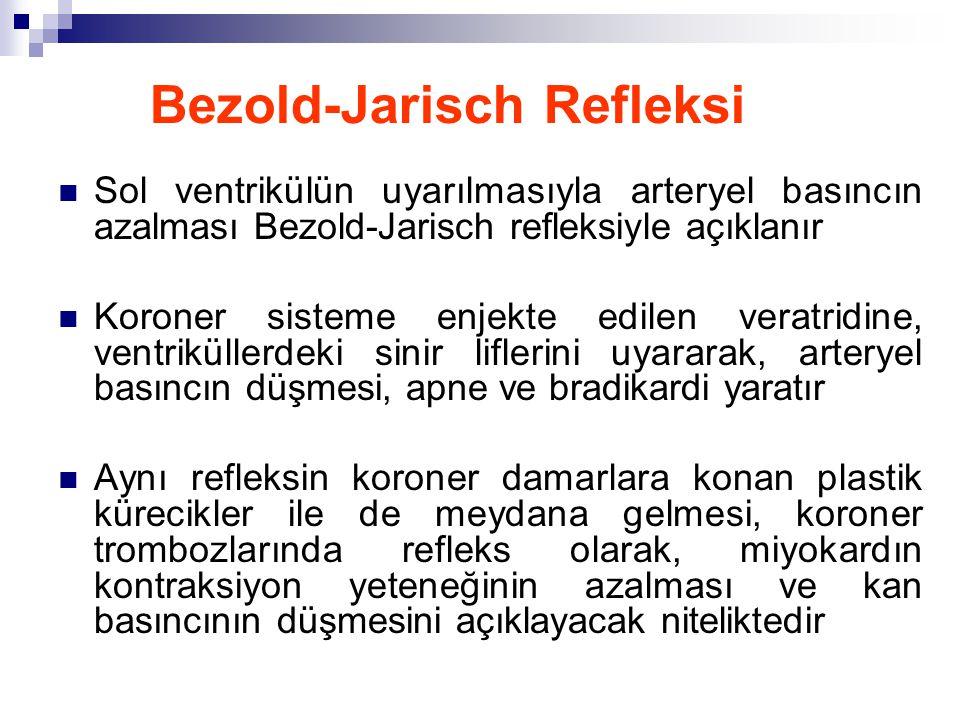 Bezold-Jarisch Refleksi