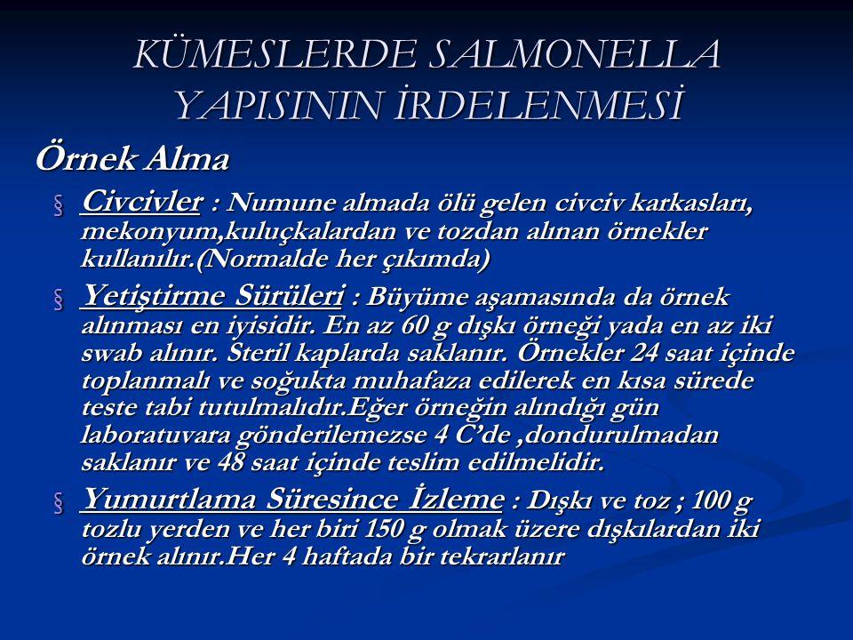 KÜMESLERDE SALMONELLA YAPISININ İRDELENMESİ