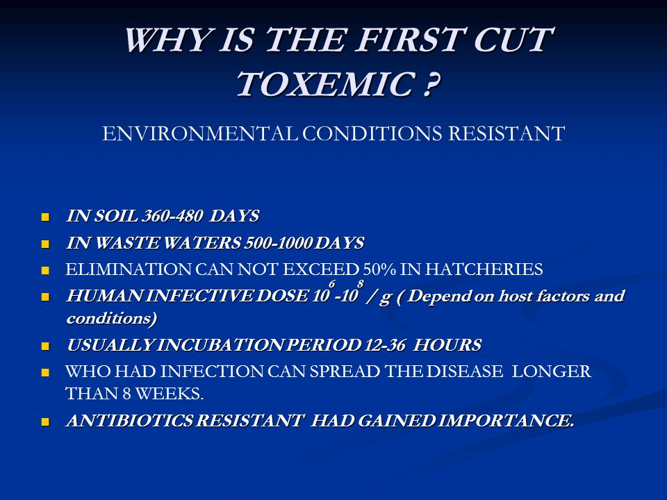 WHY IS THE FIRST CUT TOXEMIC