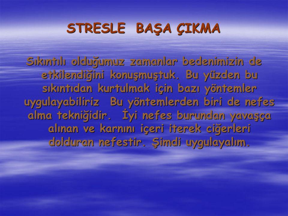 STRESLE BAŞA ÇIKMA