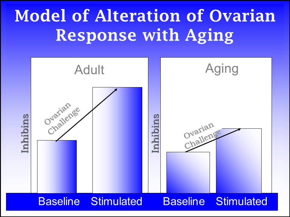 Model of Alteration of Ovarian Response with Aging