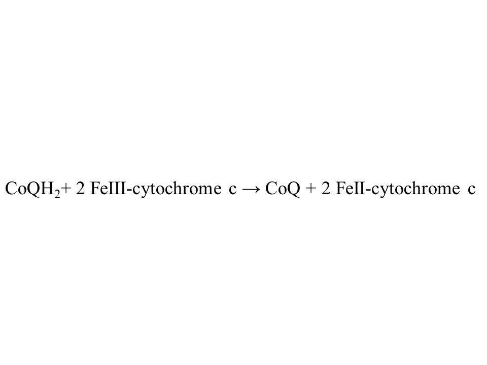 CoQH2+ 2 FeIII-cytochrome c → CoQ + 2 FeII-cytochrome c