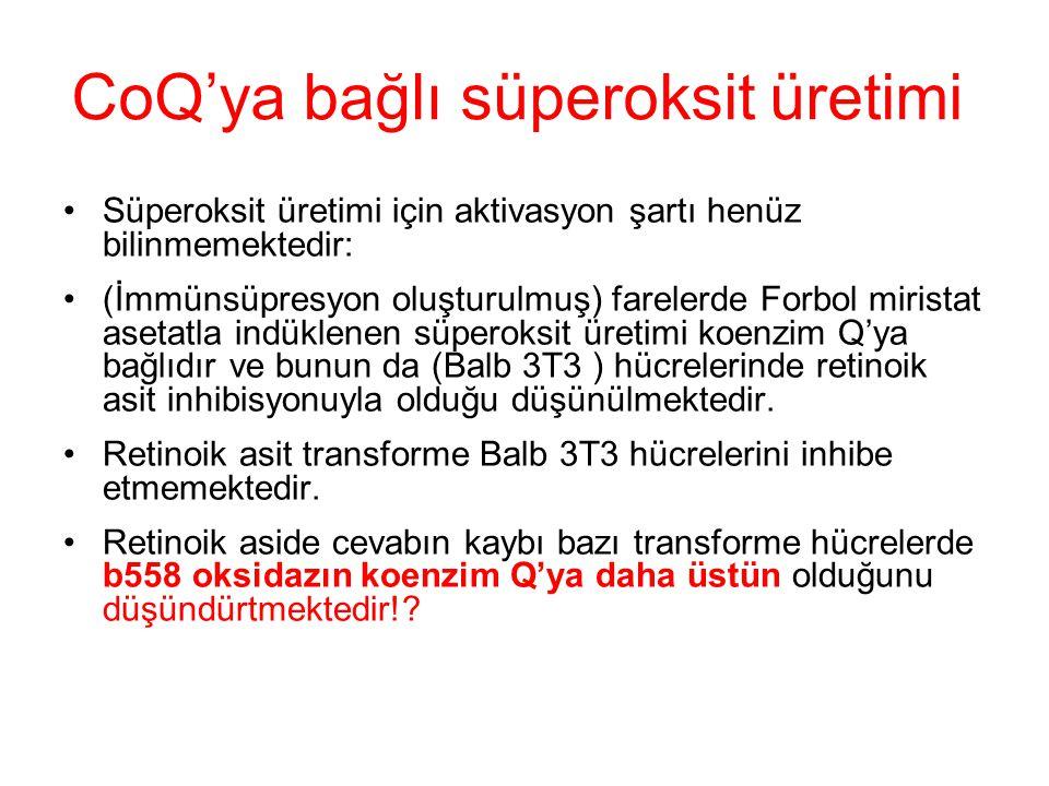 CoQ'ya bağlı süperoksit üretimi