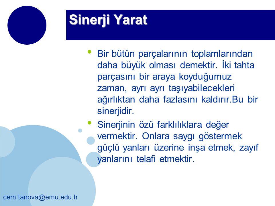 Sinerji Yarat