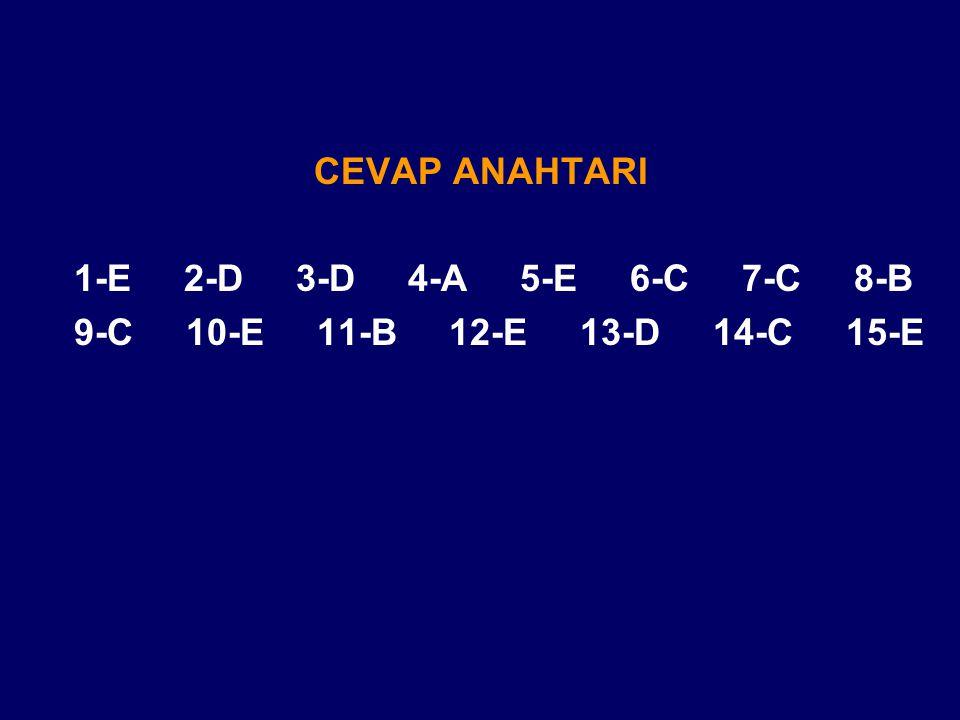 CEVAP ANAHTARI 1-E 2-D 3-D 4-A 5-E 6-C 7-C 8-B.